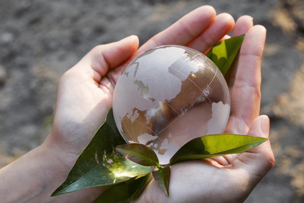 Yenilenebilir Enerji Kaynakları ve Biyogaz
